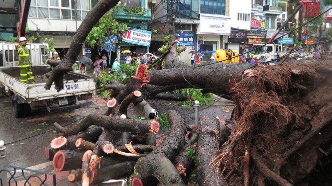 Ten killed, missing as storm Mirinae pounds northern Vietnam
