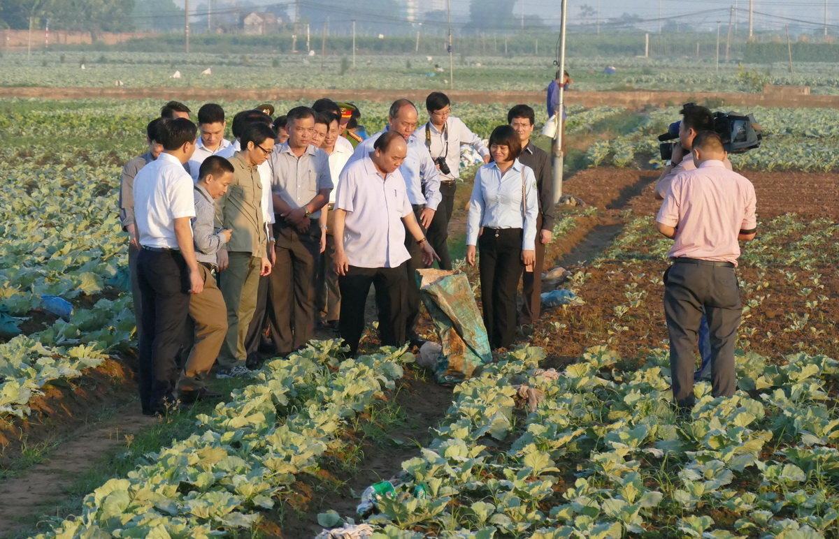 Vietnam premier inspects food safety at Hanoi market, veggie farm