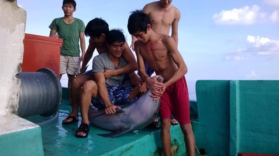 Facebook photos show Vietnam fishermen slaughtering dolphins