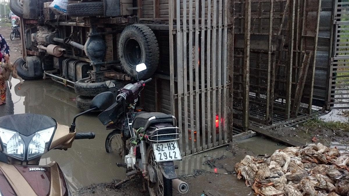Locals buy dead ducks to help driver as truck overturns in southern Vietnam