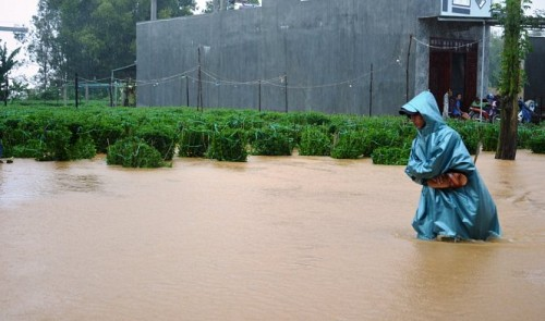 New cold spells, floods to hit northern, central Vietnam