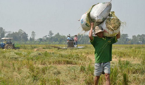 Thailand, Vietnam markets quiet ahead of Christmas, New Year