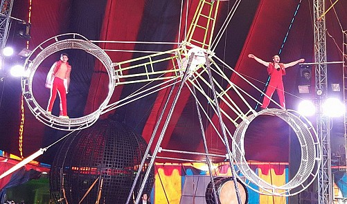 Ho Chi Minh City circus shows to feature 14 int'l performers