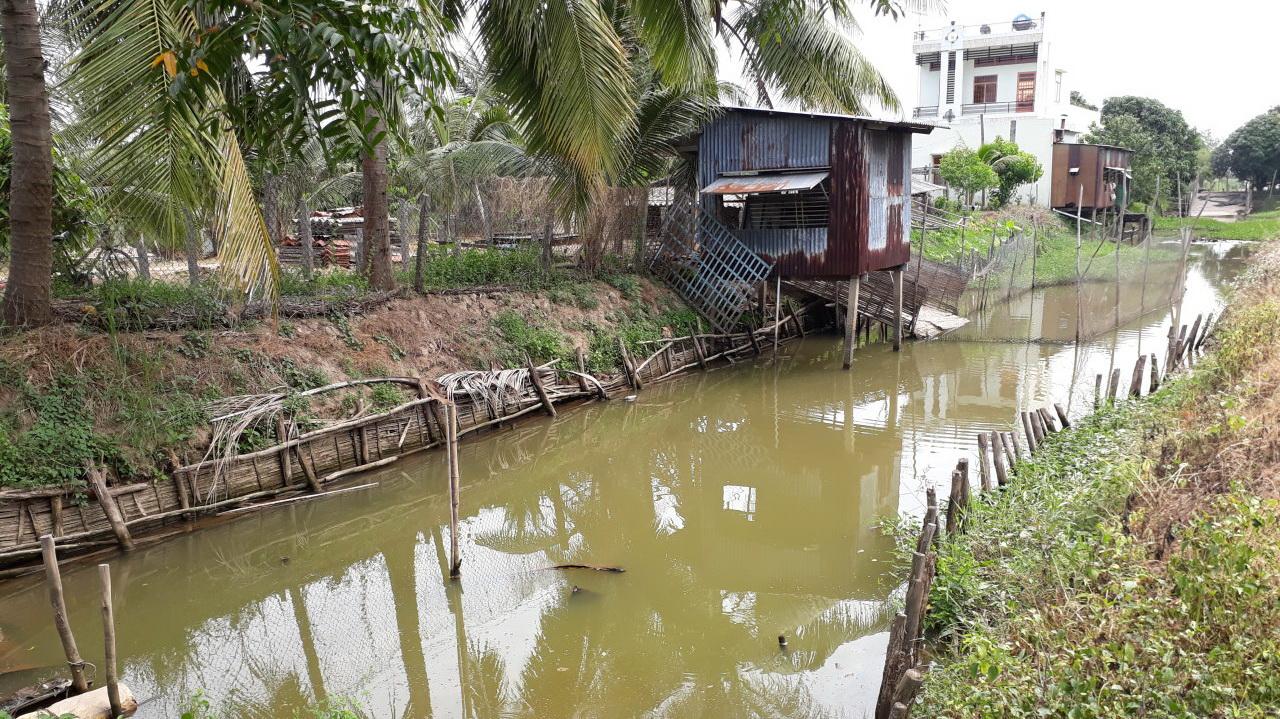 Vietnam on full alert as bird flu hits neighbors China, Cambodia