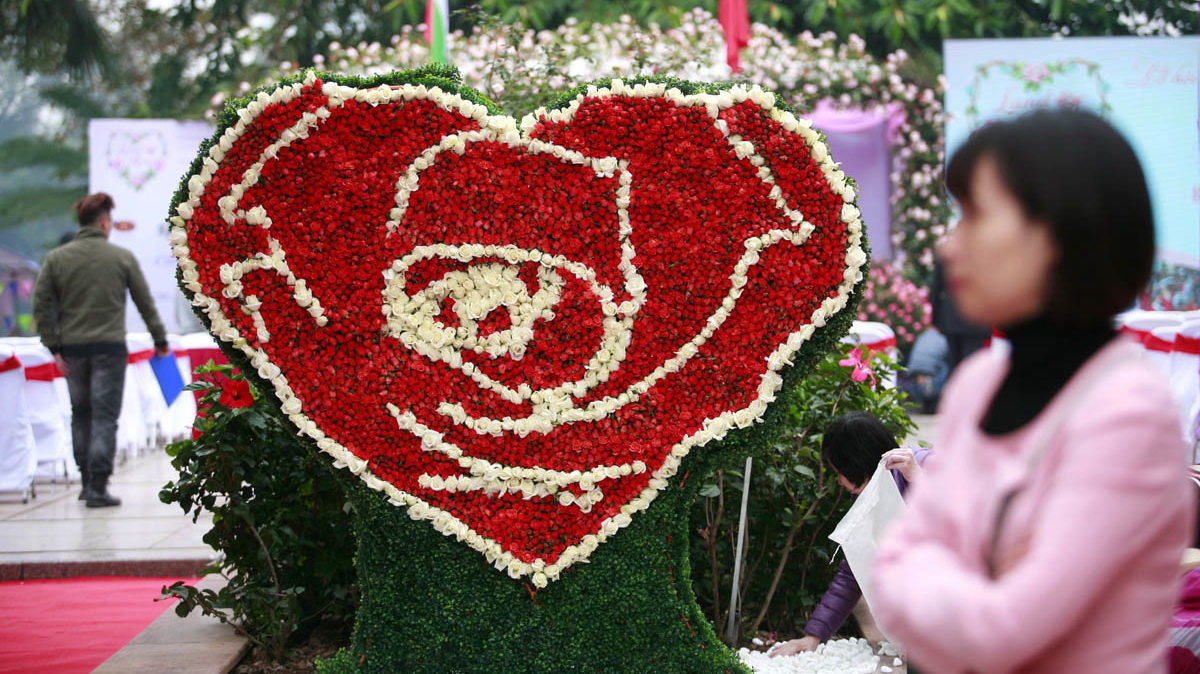 Withered flowers spoil opening day of Bulgarian rose festival in Hanoi