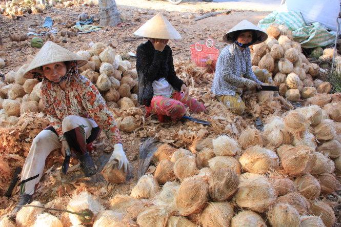 Fruit processors resort to imports in Vietnam's 'coconut kingdom'