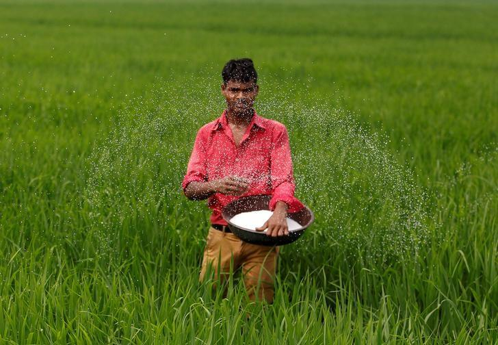 Rice prices rise in India, stable in Vietnam