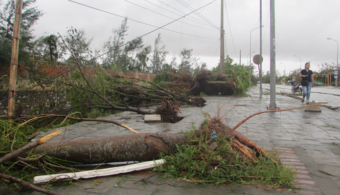Up to 15 storms, depressions forecast to enter East Vietnam Sea in 2017