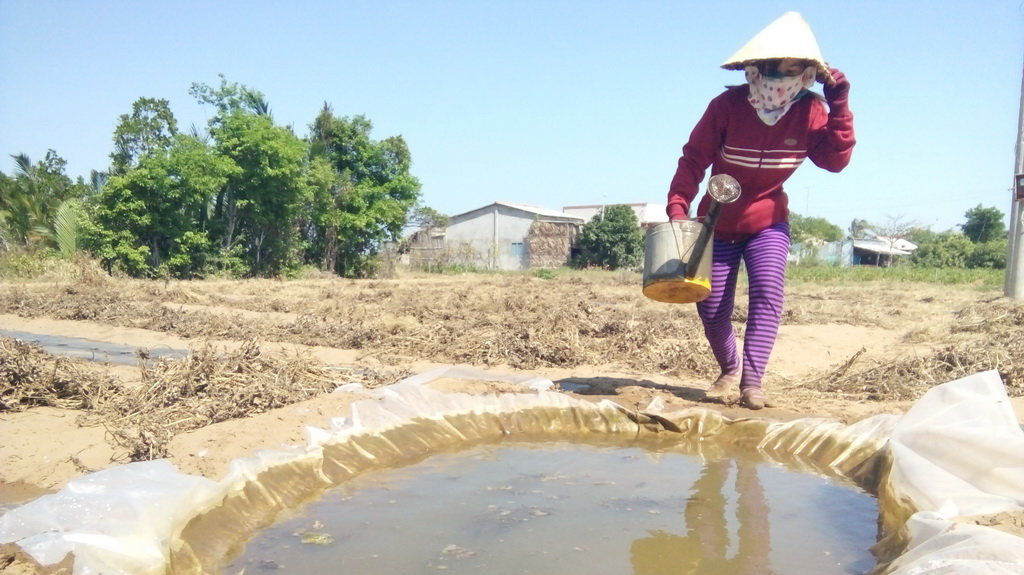 ADB-backed projects key to Vietnam's improved water security
