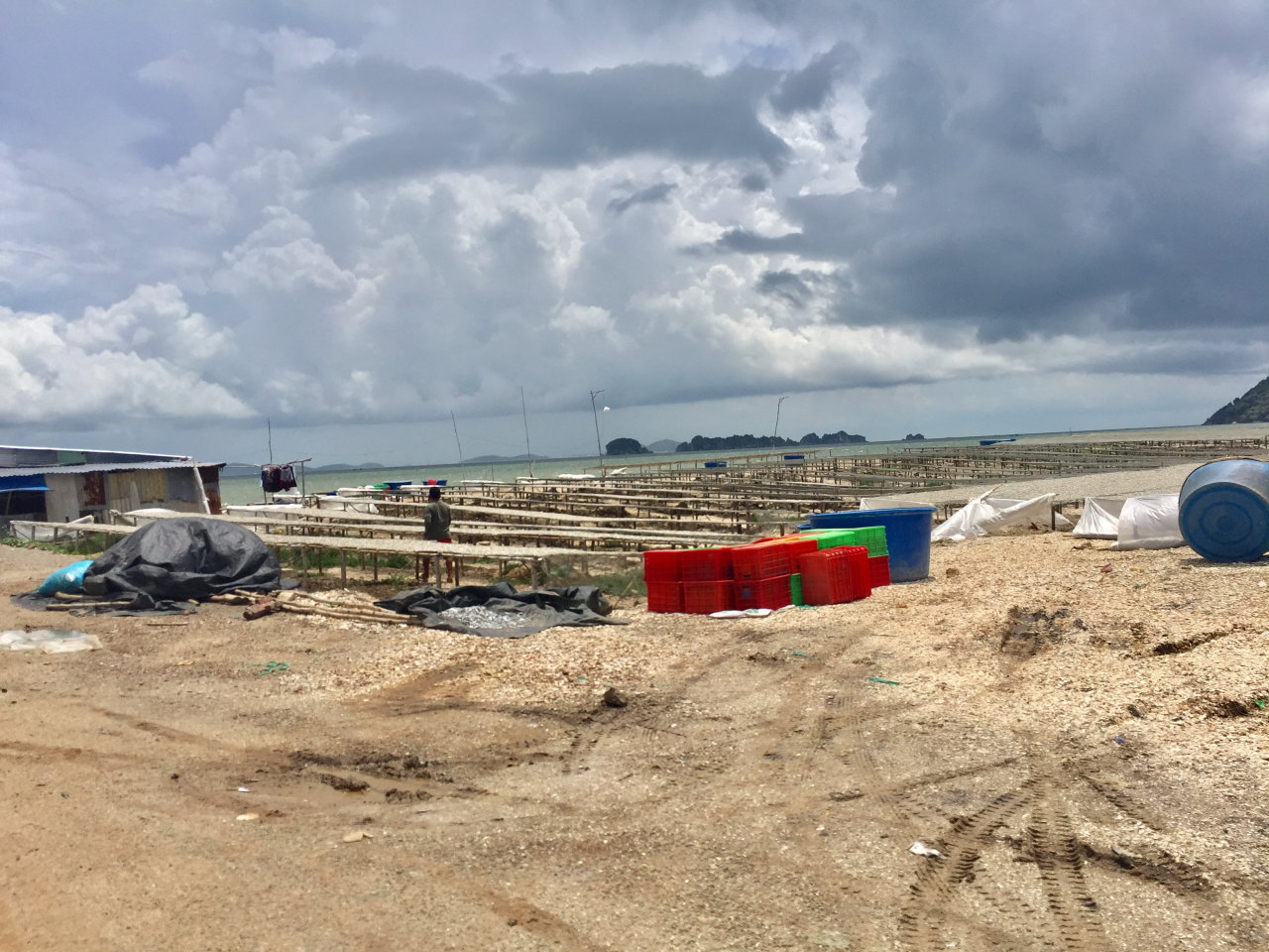 Company discovered 'filling' 5.3 hectares of sea in southern Vietnam