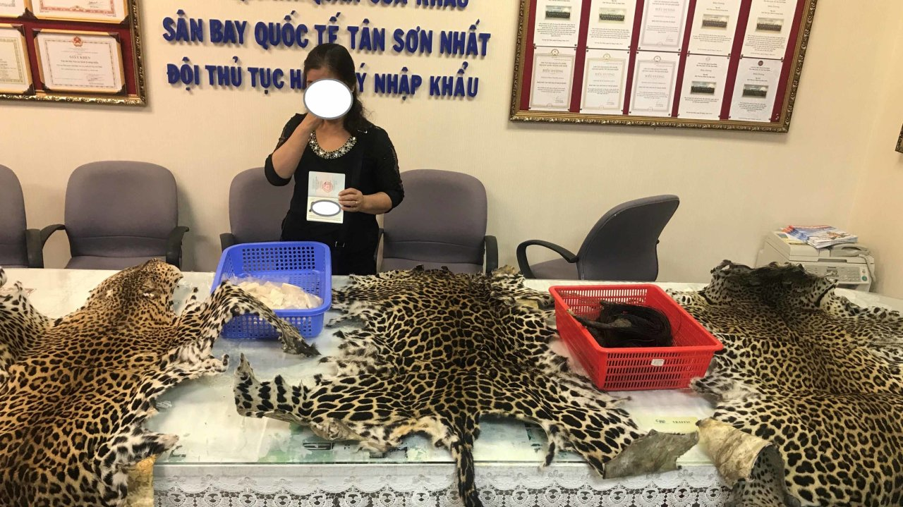 Wildlife smuggling on the rise in Vietnam