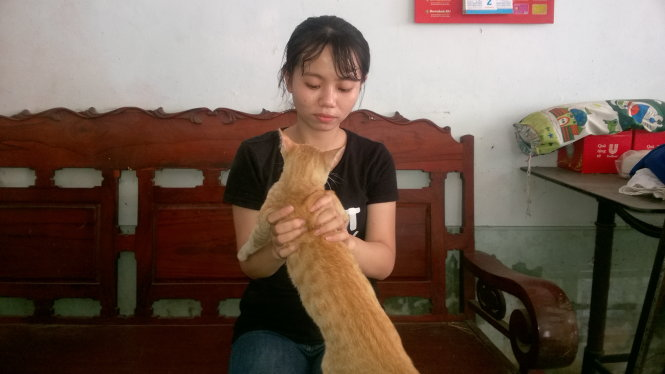 Passenger forced off Phuong Trang bus for smuggling cat in backpack