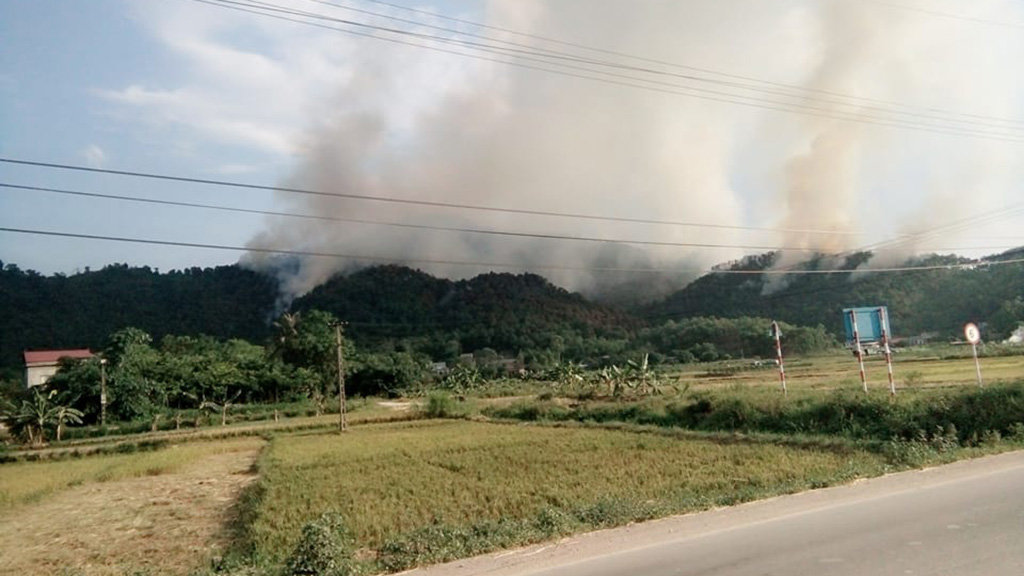 Fire engulfs protective forest in Hanoi