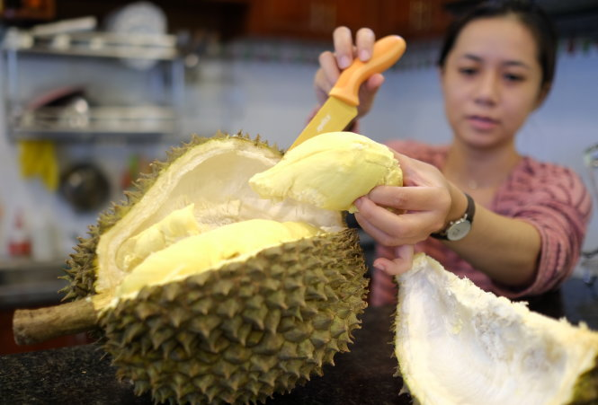 Vietnamese farmers apply technology to growing durians with heart