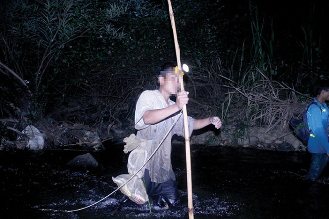 Snake-hunting rampant in protected Vietnamese forest