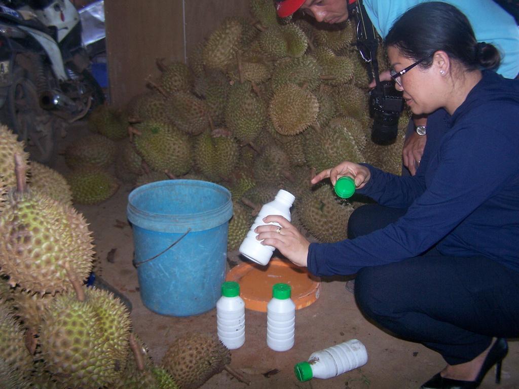 Durian wholesaler caught soaking fruit in ripening agent in Vietnam