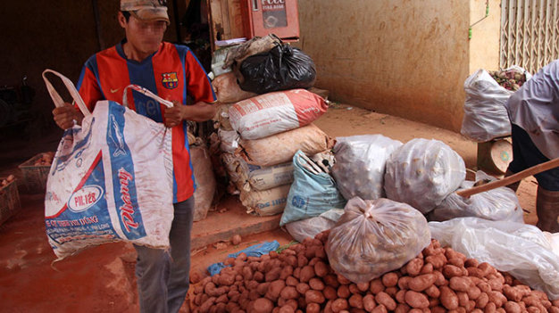 Chinese potatoes still sold as Da Lat produce