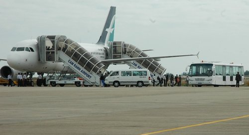 Vietnam Airlines flight delayed after dogs 'invade' Cam Ranh airport