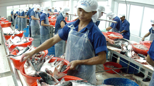 Vietnam's seafood 'yellow carded' by European Commission