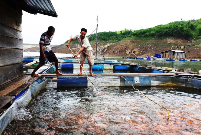 ​Fish farmers' floating life on hydropower lake in central Vietnam
