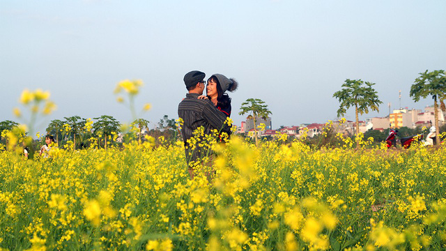 A couple create sweet memories at the canola terrace.