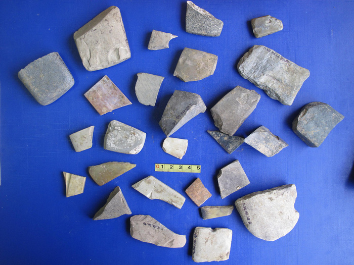 Artifacts unearthed from the Vuon Chuoi archeological site in Hanoi. Courtesy of Dr. Nguyen Van Huy