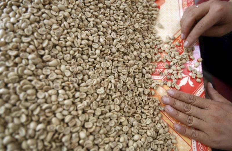 Weak coffee demand in Vietnam amid erratic weather, prices steady