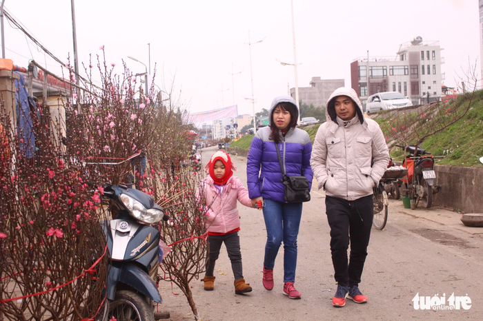 A family takes a stroll in the Quang Ba flower market, enjoying the colorful blossoms. Photo: Tuoi Tre