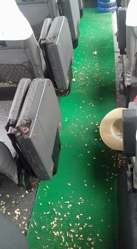 The floor of a passenger bus full of pumpkin seed hulls is seen in this photo posted on the Facebook of Tuan Anh.