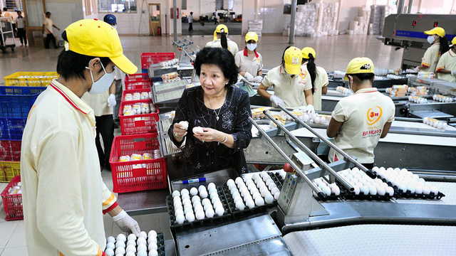 ​VinaCapital fund channels $32.5mn into Vietnam's largest egg producer