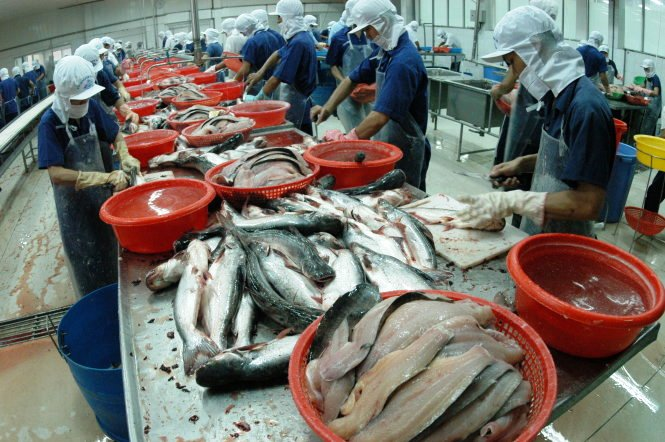 Vietnam goes to WTO to challenge U.S. restrictions on pangasius fish