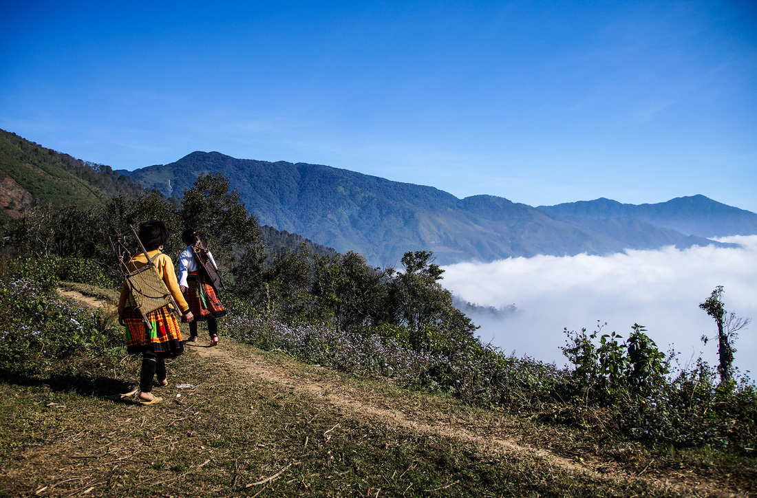 Two women from the Mong ethnicity go into the woods to gather bamboo shoots. Photo: Tuoi Tre