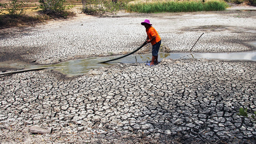 A resident in the south-central Vietnamese province of Ninh Thuan pumps water out of a drying lake. Photo: Tuoi Tre