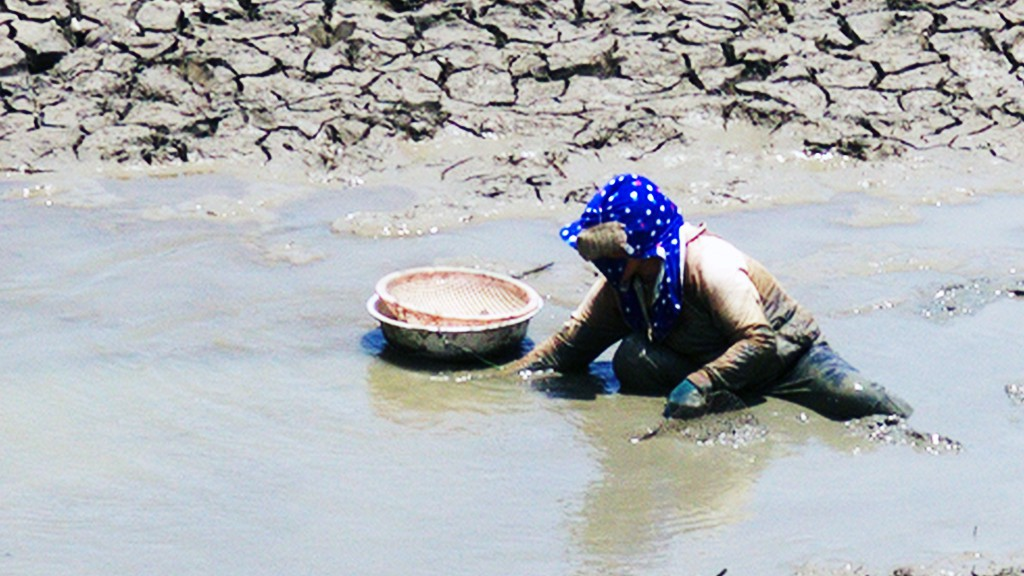 Le Thi Hong hunts for crabs and shells in a puddle of water inside Phuoc Nhon Lake.