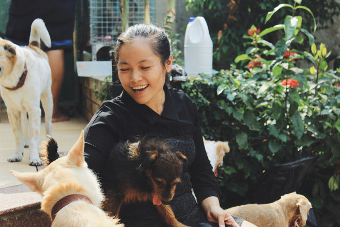 With great love, Vietnamese woman cares for over 100 stray cats, dogs