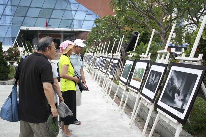 Da Nang exhibition features 1,000 works by int'l artists