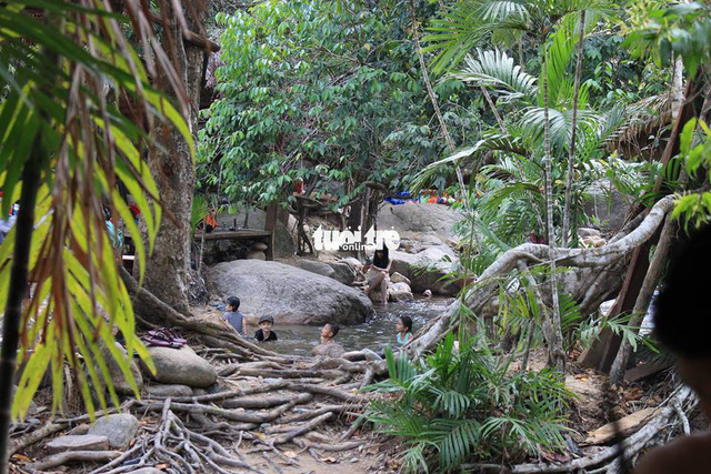 Management of Vietnamese natural reserve mulls renting forest land to tourism companies