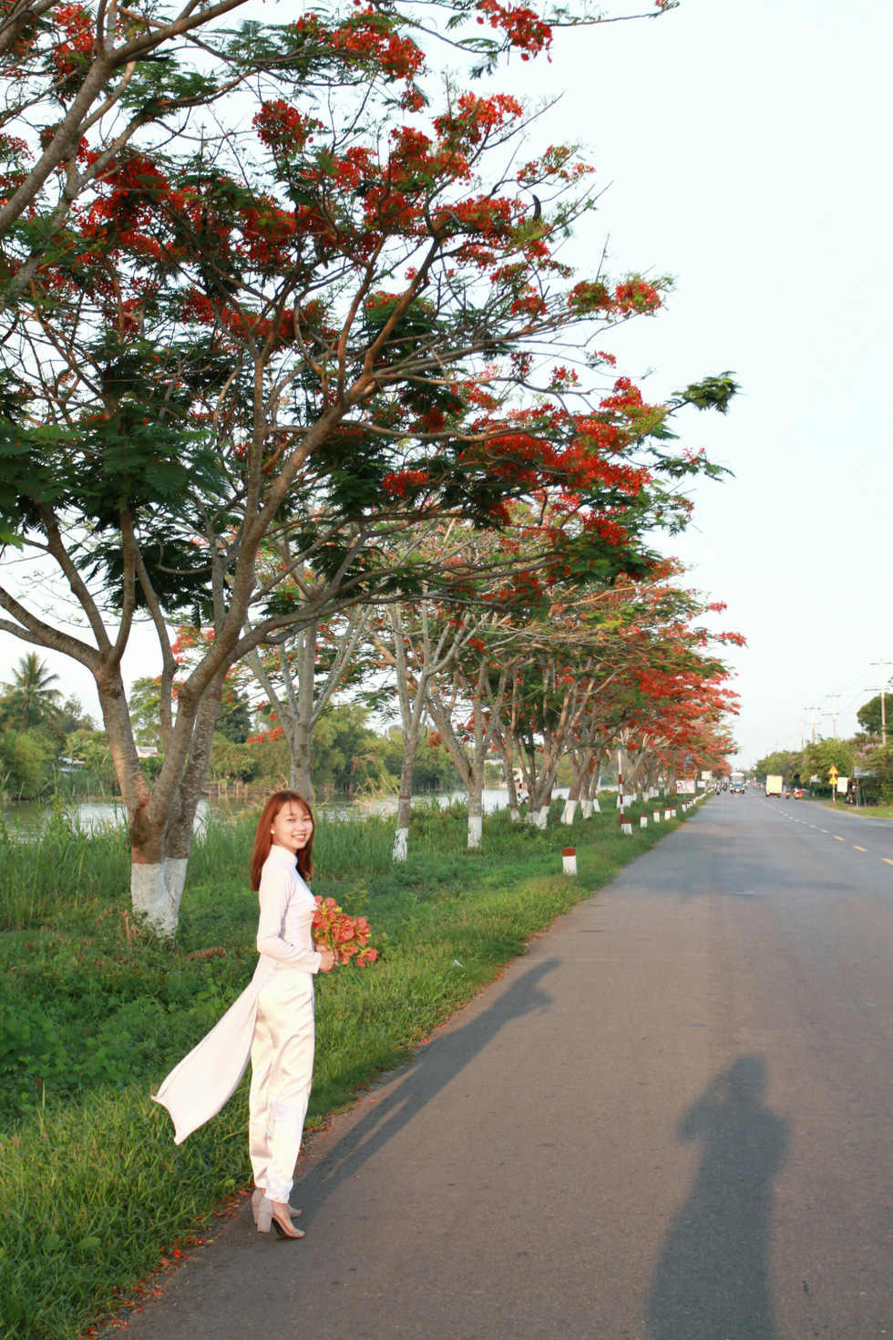 A young student in ao dai poses under red flamboyant flowers in Dong Thap Province, southern Vietnam. Photo: Tuoi Tre