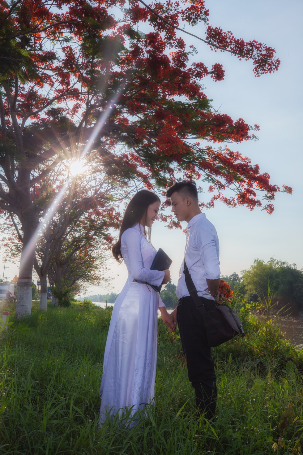A young couple wearing school uniform pose under red flamboyant flowers in Dong Thap Province, southern Vietnam. Photo: Tuoi Tre