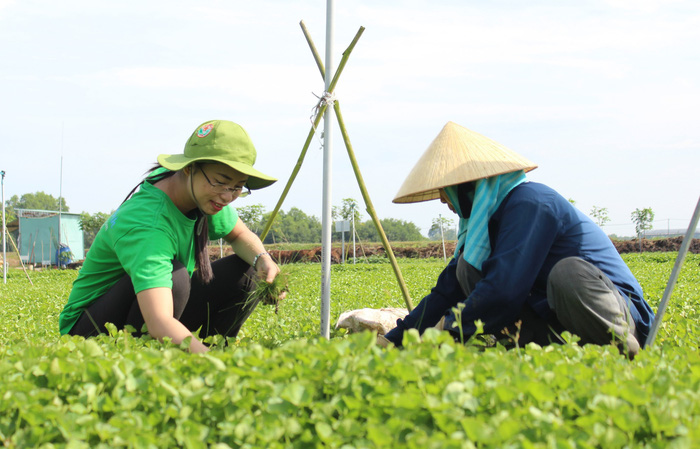 Young startup founders dream of clean Vietnamese veggie powders
