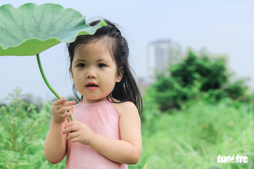 A little girl poses with lotus flowers in Hanoi. Photo: Tuoi Tre