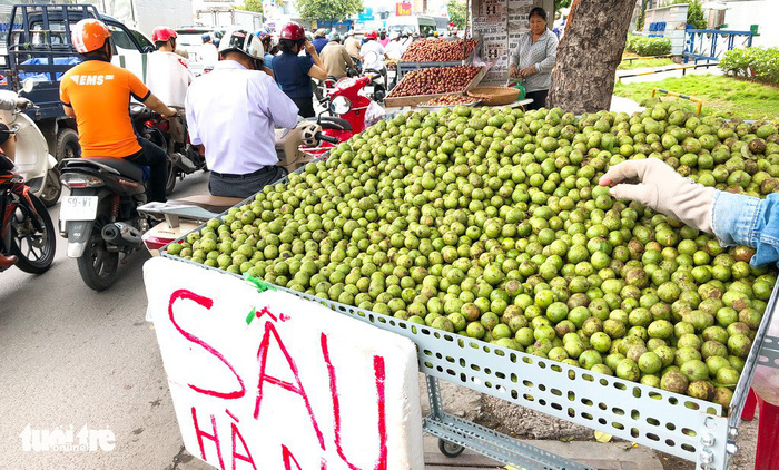 Sau is seen on sale on a sidewalk in Hanoi. Photo: Tuoi Tre