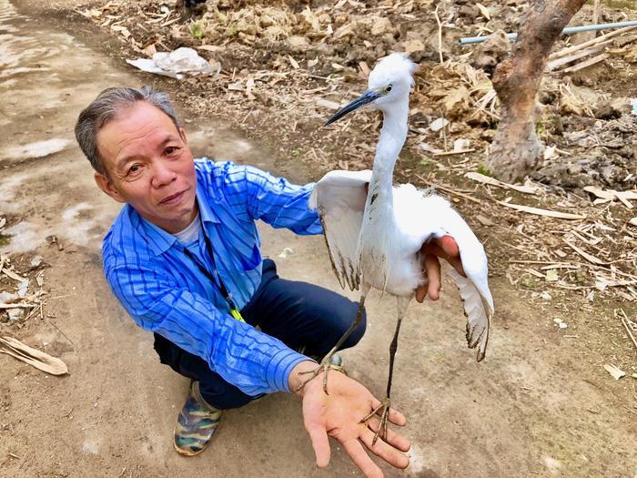 Vietnam farmers struggle to protect wild storks