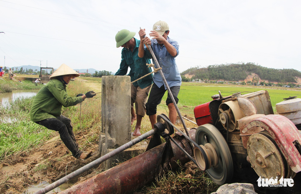 Paddy farmers struggle with prolonged drought in north-central Vietnam