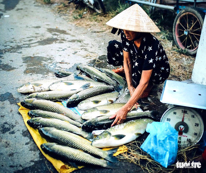 ​Central Vietnamese villagers reel from mass deaths of farmed fish