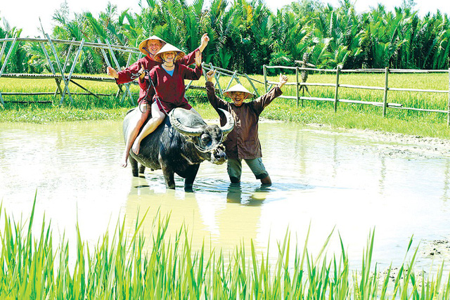 ​Experiencing farmer life a new trend drawing foreign tourists to Vietnamese countryside locales