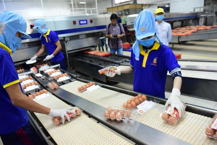 Vietnamese enterprises underprepared for M&A gamble