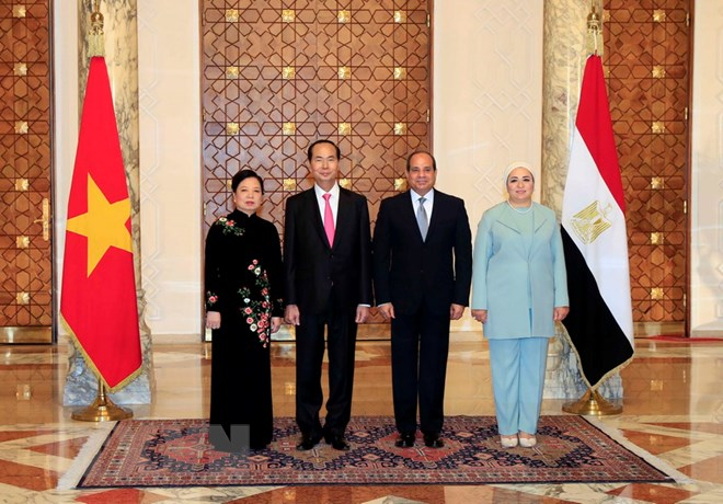 Vietnam boosts friendship, multifaceted cooperation with Egypt