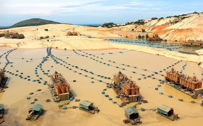 Vietnam considers banning raw ore exports