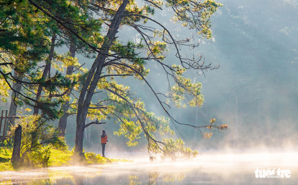 The most beautiful season to visit Da Lat in Vietnam